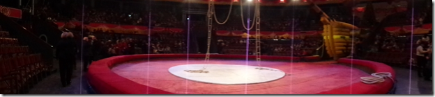 Tbilisi Circus Ring